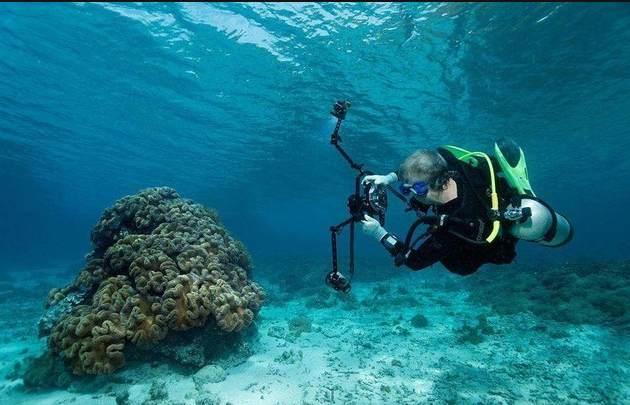Some tips for Underwater portrait photography